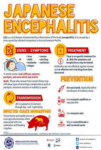 japanese encephalitis - photo #27